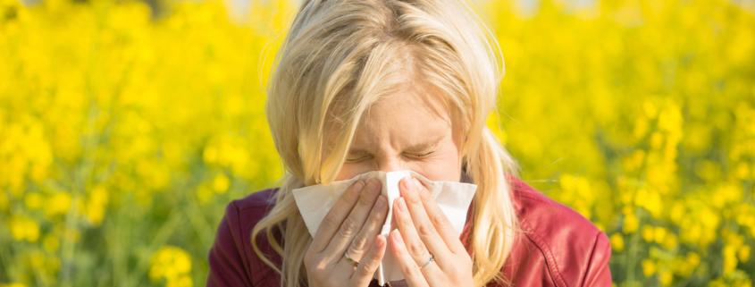 Allergie und Immunsystem